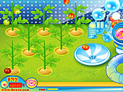 Sue Tomato Factory Games